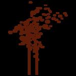 Samolepka na zeď: Bublinkovník (1074) na stěnu