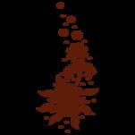 Samolepka na zeď: Květena (1251) na stěnu
