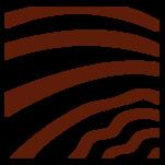 Samolepka na zeď: Zebra výřez B (1313) na stěnu