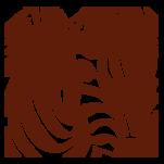 Samolepka na zeď: Zebra obraz (1324) na stěnu