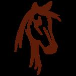 Samolepka na zeď: Hlava koně (1435) na stěnu