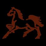 Samolepka na zeď: kůň :5032: na stěnu