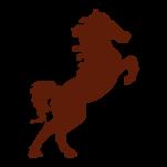 Samolepka na zeď: kůň :5034: na stěnu