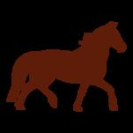 Samolepka na zeď: kůň :5039: na stěnu