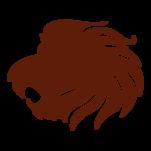 Samolepka na zeď: lev :5556: na stěnu