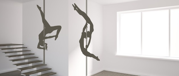 Pole dance double (2260)