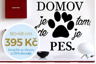 Domov a pes (1994)