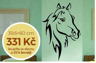 Hlava koně (1958)